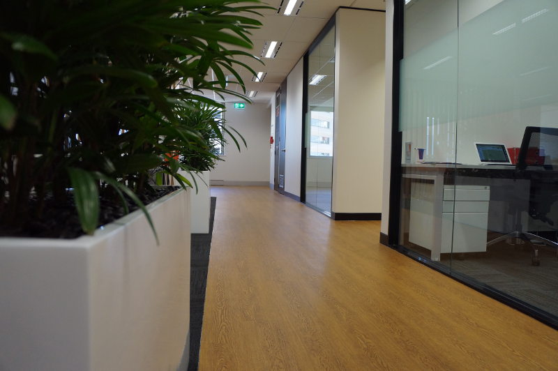 Luxury Brisbane Serviced Office